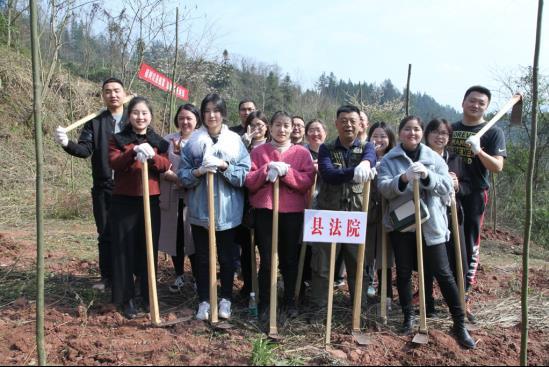 """鹤峰县法院参加""""义务植树周""""活动"""